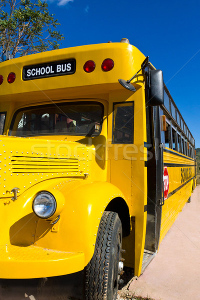 Yellow School Bus Stock photo © stoonn