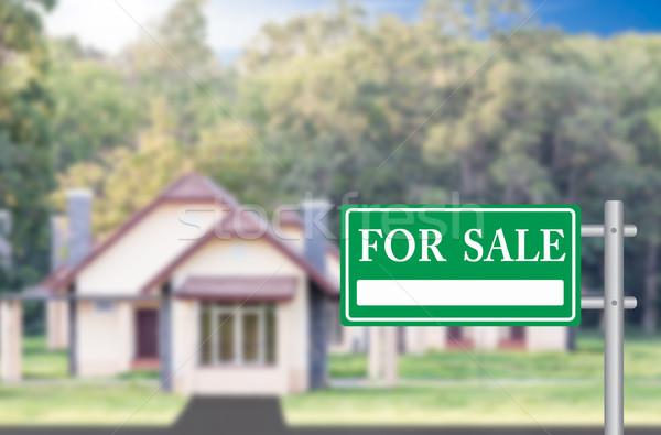 Otthon vásár zöld felirat épület pénzügy Stock fotó © stoonn
