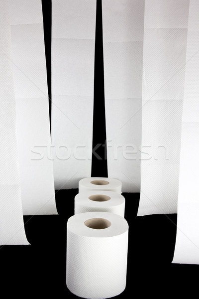 Toilet paper picture Stock photo © Stootsy
