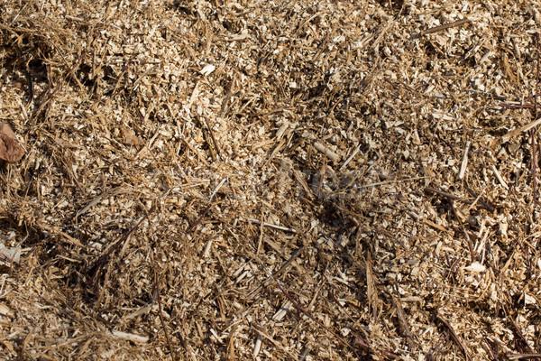 Sawdust Stock photo © Stootsy