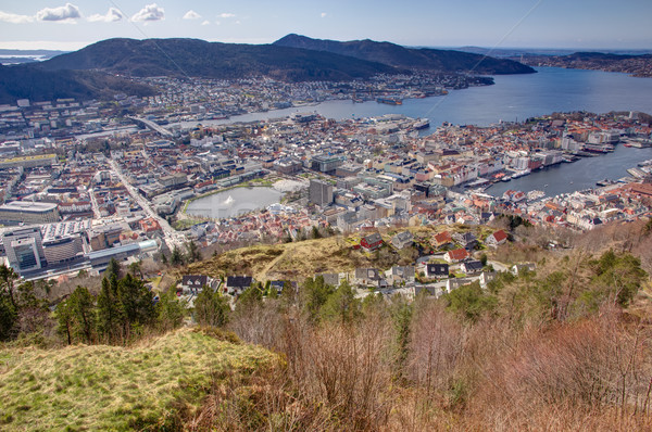 View over Bergen taken from the popular landmark Fløyen. Stock photo © Stootsy