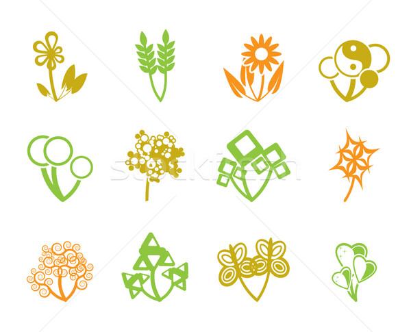 12 resumen flores vector icono primavera Foto stock © stoyanh