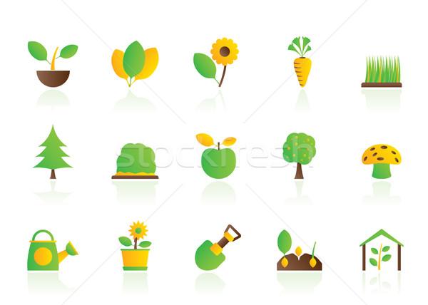 Différent plantes jardinage icônes vecteur Photo stock © stoyanh