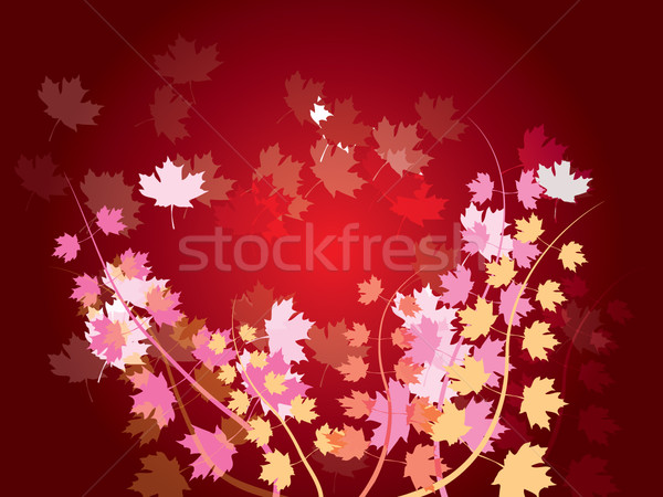 autumn leaves - nature background Stock photo © stoyanh