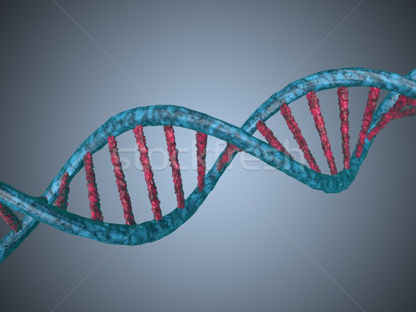 digital illustration of a dna Stock photo © stryjek