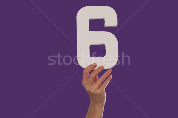 Female hand holding up the number 6 from the bottom Stock photo © stryjek