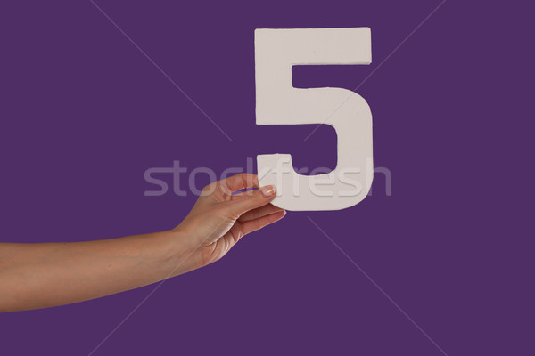 Female hand holding up the number 5 from the left Stock photo © stryjek