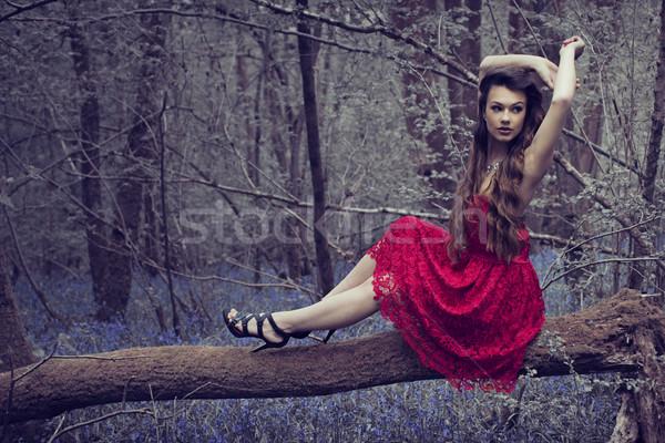 şık kadın kırmızı elbise poz orman elbise Stok fotoğraf © stryjek