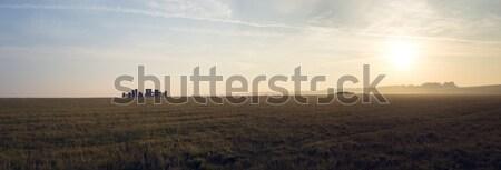 Gyönyörű panoráma hajnal naplemente nap alacsony Stock fotó © stryjek