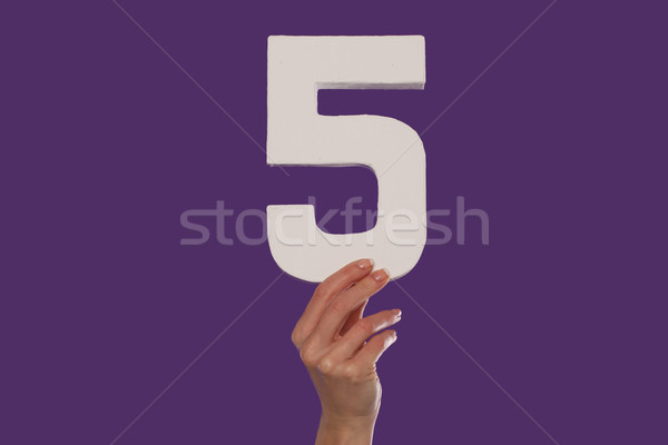 Female hand holding up the number 5 from the bottom Stock photo © stryjek