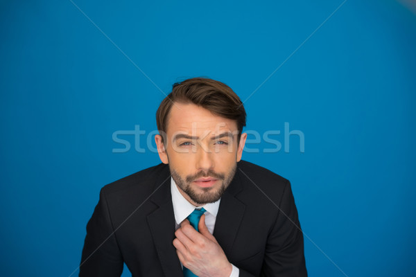 Stockfoto: Portret · knap · zakenman · stropdas · business