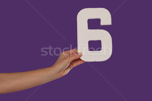 Female hand holding up the number 6from the left Stock photo © stryjek