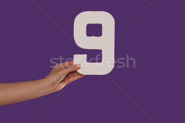 Female hand holding up the number 9 from the left Stock photo © stryjek