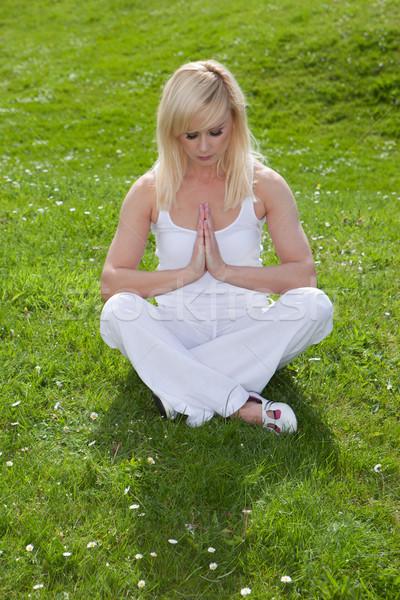 безмятежность йога довольно блондинка девушки зеленая трава Сток-фото © stryjek