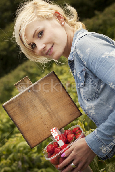 Beautiful blonde woman picking strawberries Stock photo © stryjek