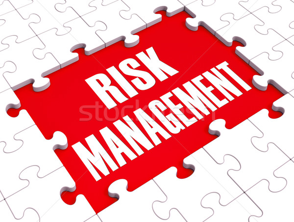 Risk Management Shows Identifying And Evaluate Stock photo © stuartmiles