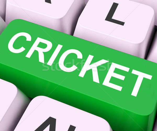 Cricket Key Means Sport Or Match Stock photo © stuartmiles