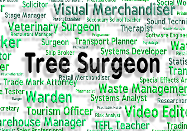 Tree Surgeon Represents General Practitioner And Branch Stock photo © stuartmiles