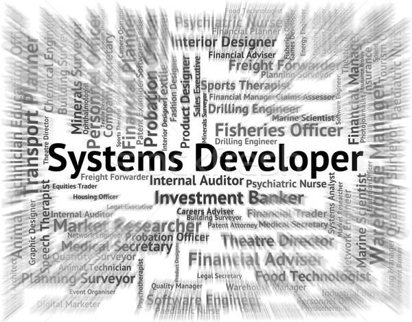 Systems Developer Indicates Developing Expert And Employment Stock photo © stuartmiles
