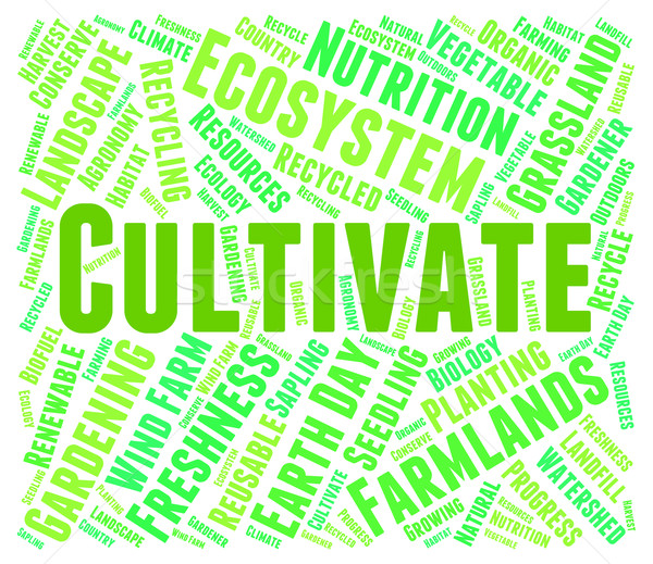 Cultivate Word Indicates Grows Farms And Cultivates Stock photo © stuartmiles