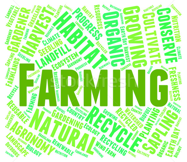 Farming Word Represents Words Farmstead And Farmland Stock photo © stuartmiles