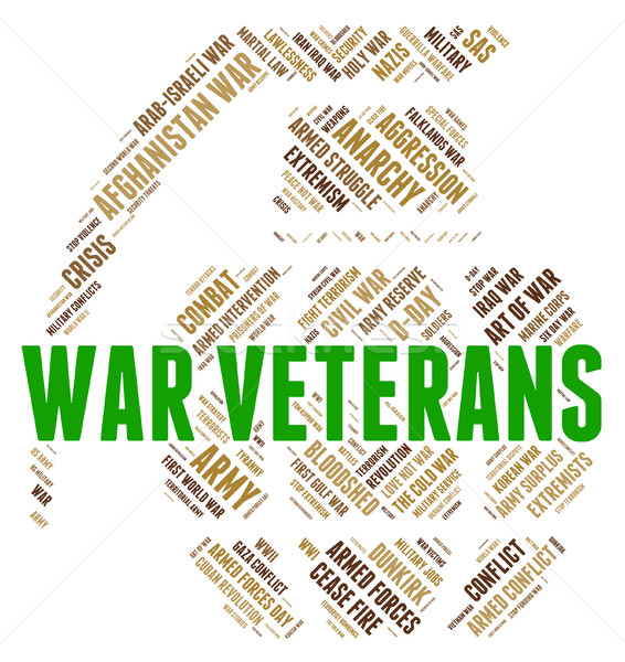 War Veterans Shows Armed Forces And Bloodshed Stock photo © stuartmiles