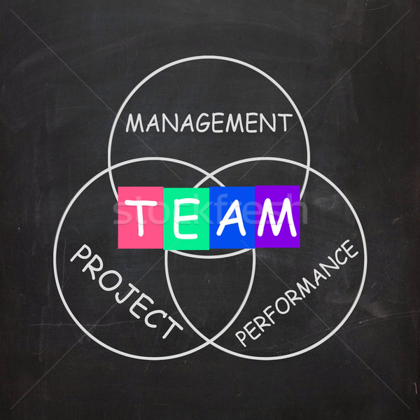 Words Refer to Team Management Project Performance Stock photo © stuartmiles