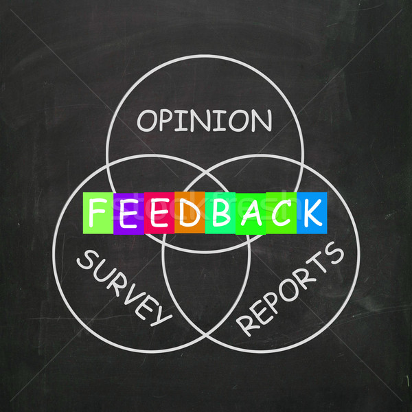 Feedback Gives Reports and Surveys of Opinions Stock photo © stuartmiles