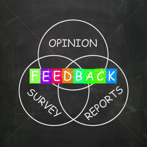 Visszajelzés jelentések vélemények tükröződés elégedettség felmérés Stock fotó © stuartmiles