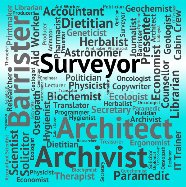 Surveyor Job Means Recruitment Word And Occupation Stock photo © stuartmiles