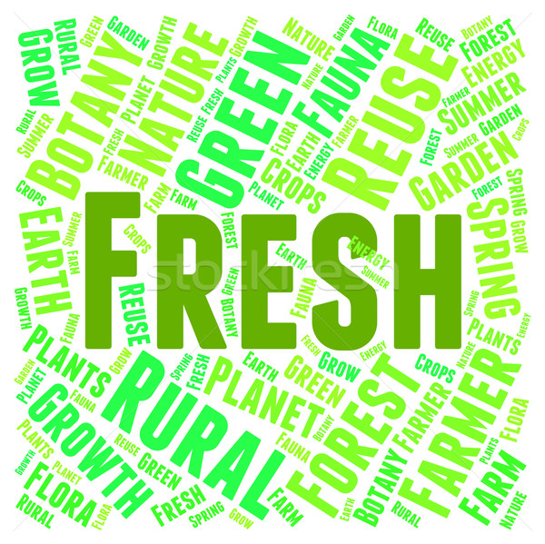 Fresh Word Represents Words Unprocessed And Freshness Stock photo © stuartmiles