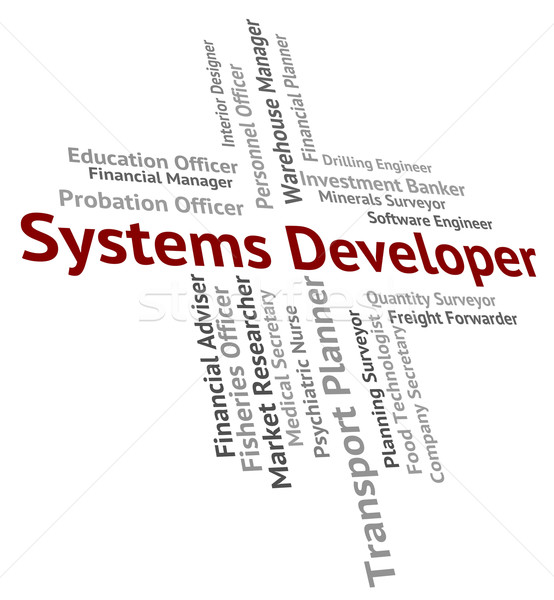 Systems Developer Indicates Work Words And Career Stock photo © stuartmiles