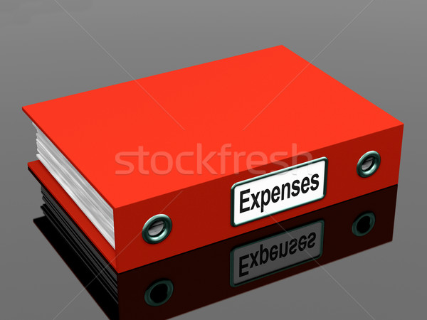 Expenses File Shows Accounting And Records Stock photo © stuartmiles