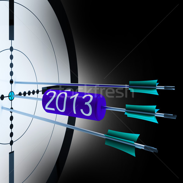 2013 Target Shows Successful Future Growth Stock photo © stuartmiles