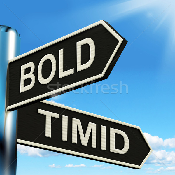 Bold Timid Signpost Shows Extroverted And Shy Stock photo © stuartmiles