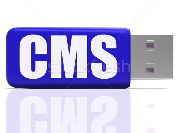CMS Pen drive Means Content Optimization Or Data Traffic Stock photo © stuartmiles