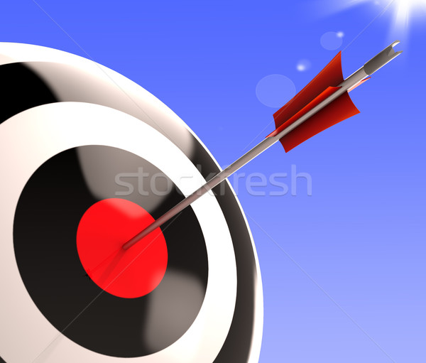 Stock photo: Bulls eye Target Shows Excellence And Skill