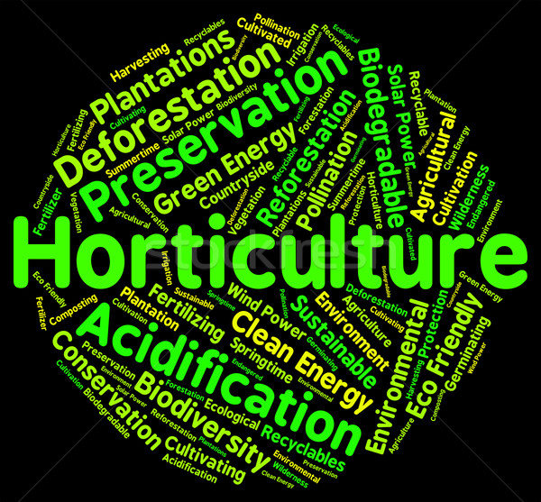 Stock photo: Horticulture Word Represents Flower Garden And Agricultural