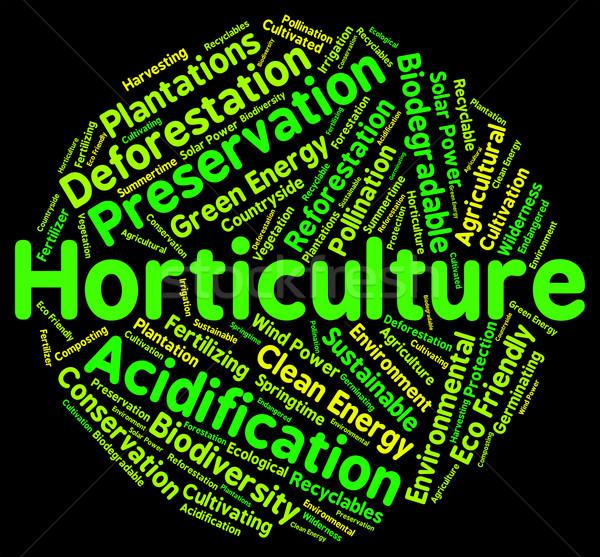 Tuinbouw woord bloementuin agrarisch tonen tuinieren Stockfoto © stuartmiles