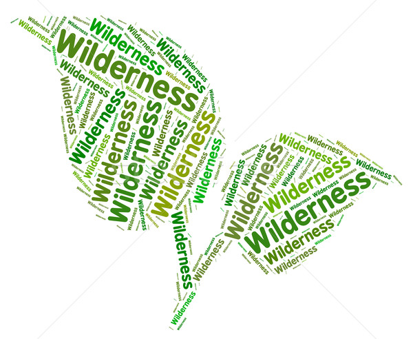 Wilderness Word Represents Uncultivated Land And Area Stock photo © stuartmiles