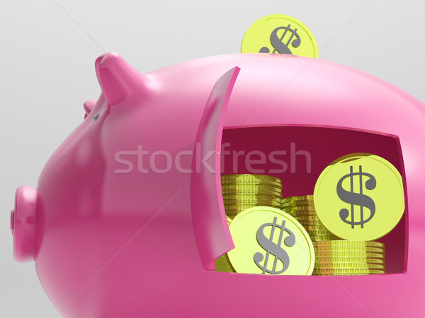 Dollars In Piggy Shows Currency And Investment Stock photo © stuartmiles