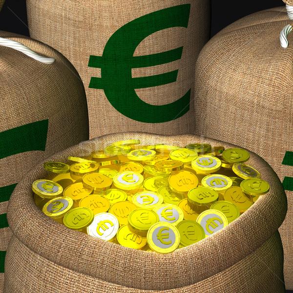Zakken munten tonen europese inkomsten rijkdom Stockfoto © stuartmiles