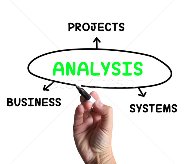 Analysis Diagram Shows Investigating Business Systems And Projec Stock photo © stuartmiles