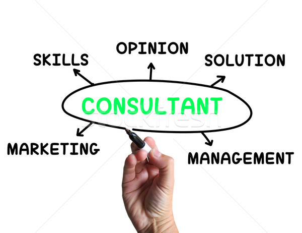 Consultant Diagram Means Specialist Skills And Opinions Stock photo © stuartmiles