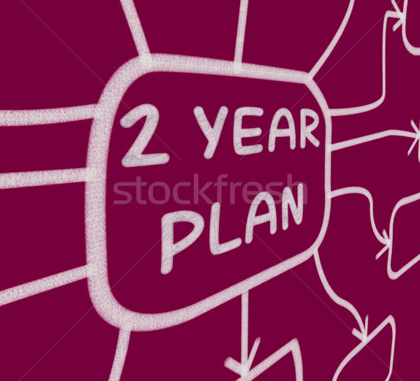 Two Year Plan Diagram Means 2 Year Planning Stock photo © stuartmiles