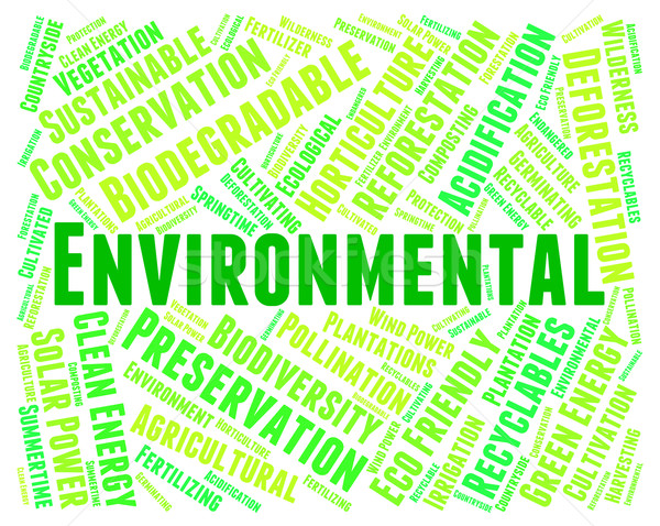 Stock photo: Eco Friendly Shows Environmental Word And Eco-Friendly