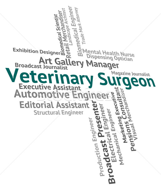 Veterinary Surgeon Indicates Career Healer And Word Stock photo © stuartmiles