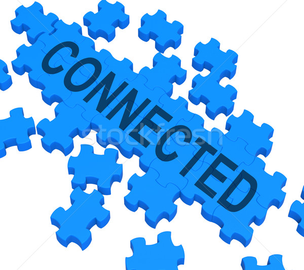 Connected Puzzle Showing Global Communications Stock photo © stuartmiles
