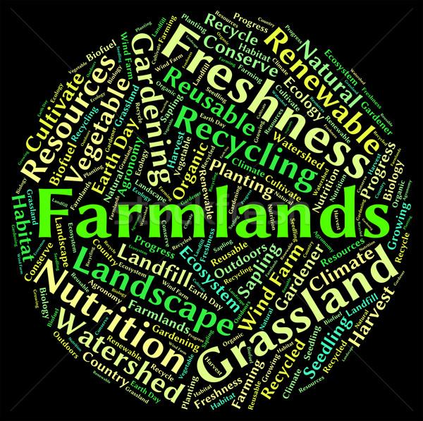 Wort Text Betriebe Landwirtschaft Worte Stock foto © stuartmiles