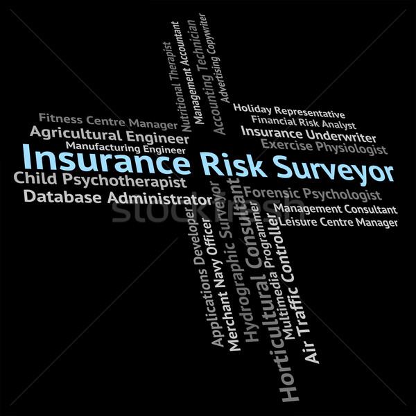 Sigorta risk kelime işçi sigortalı çalışmak Stok fotoğraf © stuartmiles